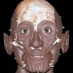 medieval facial reconstruction