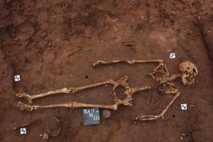 Warwickshire-skeletons