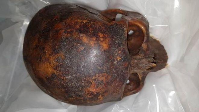 Crusader Skull