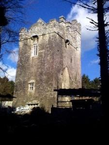 Challenges of Castle Ownership Dunsandle Castle