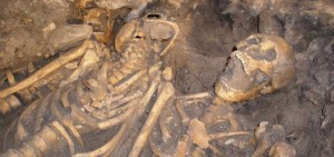 The remains of troops found in a mass grave near Towton