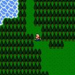 Dragon Fantasy - Forest