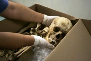 medieval-skeleton-witch-girl